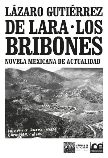 Los bribones. Novela mexicana de actualidad