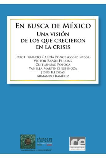 En busca de México. Una visión de los que crecieron en la crisis