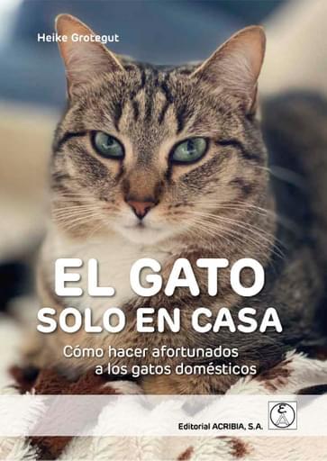 EL GATO SOLO EN CASA. Cómo hacer afortunados a los gatos domésticos