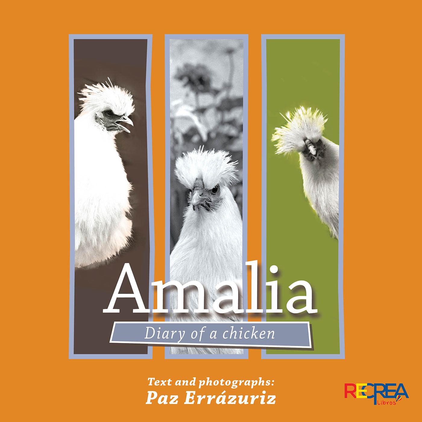 Amalia Diary of a chicken