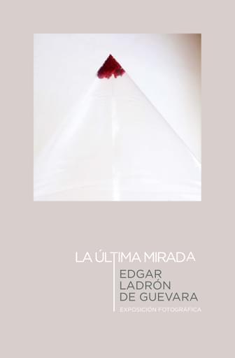 Edgar Ladrón de Guevara