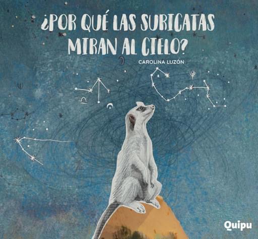 Porque las suricatas miran al cielo